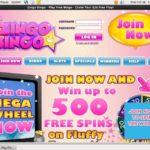 奖金 Zingo Bingo