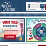 Bingo Diaries Video Slots
