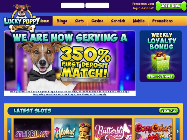 Lucky Puppy Bingo Deposit Methods