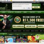Springbok Slots Bonus