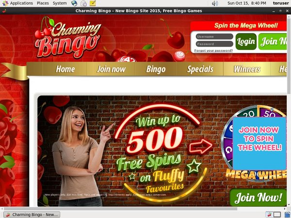 Charming Bingo Online Casino Bonus