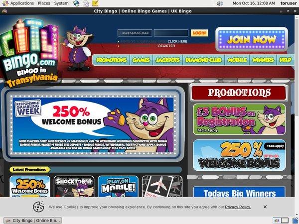 City Bingo Highest Bet