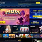 Casinomaxi Payment Options