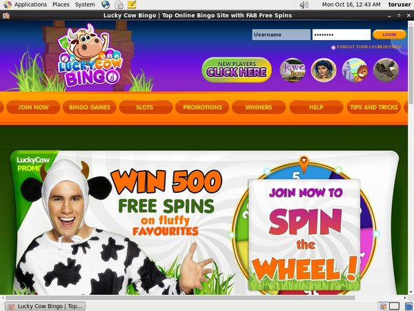 Luckycowbingo Gambling Sites