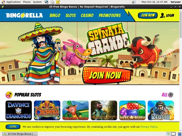 Bingorella Sign Up Promo