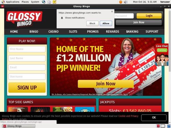 Glossy Bingo Roulette